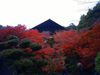 大山崎山荘 (2)