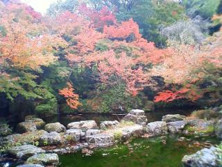 大山崎山荘 (1)